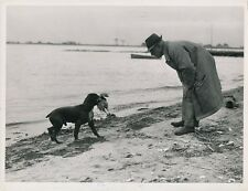 Concours Chien Chasse 1944 - Mr Dr S. Milbank Cocker USA - GF 392