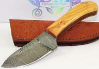 Genuine Damascus Wide Bellied Blade Full Tang Olive Wood Hunting Skinning Knife