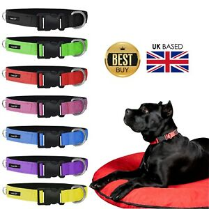OneUP Strong Nylon Dog Collar Pet Cat Puppy Adjustable Blue Black Pink Red