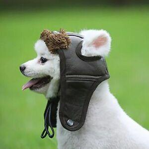 Winter Warm Dog Hat Puppy Comfortable Handsome Poilt Cap Autumn Cashmere