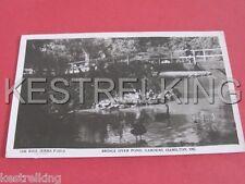 Bridge over the Pond Gardens Hamilton Victoria Australia Postcard