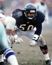 Chicago Bears MIKE SINGLETARY Glossy 8x10 Photo NFL Football Print Poster