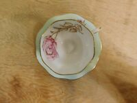 EB Foley Cup & Saucer Thorned Thorny Rose Gold Trim
