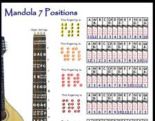MANDOLA 7 HAND POSITIONS POSTER