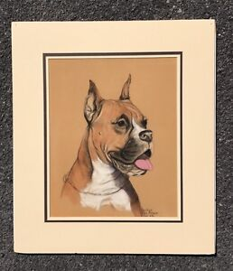 Wonderful C1940 Pastel Painting Of A Boxer Dog By Gladys Emerson Cook. Signed