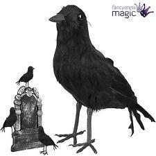 Halloween en peluche plume Crow Oiseau Merle Corbeau Robe Fantaisie Décoration Prop