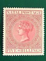 Natal stamp QV 5/- superb MH full crown CC watermark