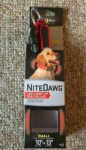Nite Dawg LED Light Up Dog Collar,
