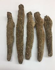 Alaska Wild Caught Sun Dried Red Sea Cucumber Medium Size (1 LB)