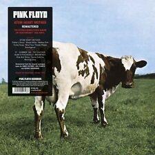 Pink Floyd Reissue 33RPM Classic Rock LP Records