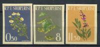Albanien 1962 Mi. 654B-656B Postfrisch 100% Pflanzen