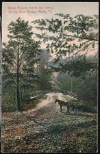 MEDIA PA Autumn Leaves Falling at Blue Bridge Horse & Wagon Vintage Postcard Old