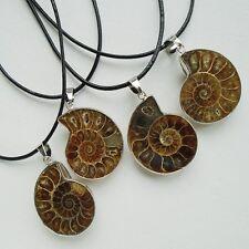 Ammonit Fossil, Schnecke, braun, Anhänger mit Kette, Halskette, Silber plattiert
