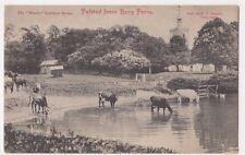 Felsted from Bury Farm Essex Postcard, B718