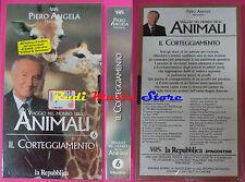 VHS film VIAGGIO NEL MONDO DEGLI ANIMALI 7 6 Il corteggiamento SEALED(F90)no dvd