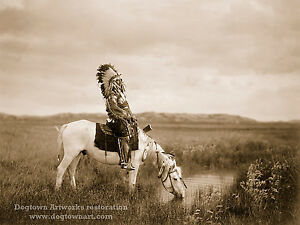 Restored Vintage Native American Indian PHOTOGRAPH Oasis in the Badlands, Curtis