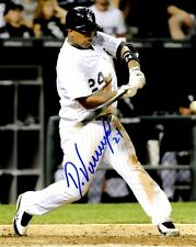 Signed  8x10 DAYAN VICIEDO Chicago White Sox Photo - COA