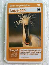 #197 Lepelaar   - Animal Album Tradingcard (Not aSticker) WWF