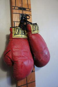 Vintage Everlast 12 oz. Boxing Gloves