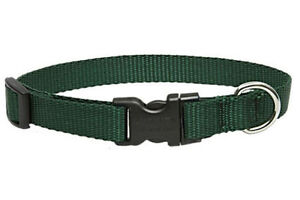 """Lupine Dog Collar 1/2"""" GREEN 6"""" - 9"""" New Solid Forest Green Nylon Adjustable USA"""