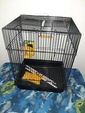 """New listing Bird Cage and Accessories 17"""" x 10"""" x 13"""" Birds Cages Clean Heart Black Ladder"""