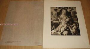 ALBRECHT DÜRER - DIE MADONNA MIT DEM ZEISIG * GERMAN PHOTOGRAVURE 1900