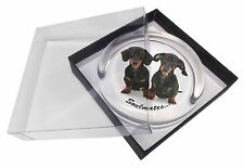 Dachshund Dogs 'Soulmates' Sentiment Glass Paperweight in Gift Box Ch, SOUL-30PW