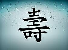 sticker car auto moto decals vinyl jdm kanji chinese sign sayings happiness r1