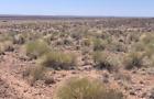 Navajo County AZ Arizona Land 1.25 acre - Scenic Flat Ranch
