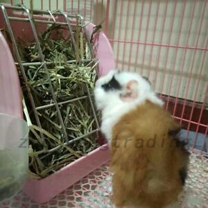 Useful Pet Rabbit Hay Feeder Small Animal Hamster Pig Less Wast Hay Rack Corner