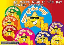 Star of the Day Teacher Reward Stickers 48 30mm School Award Well Done Mixed