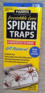 Harris Spider traps STRP glue trap with lure spider glueboard kill spiders NEW