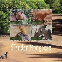 Liberia 2019 MNH Slender Mongoose 4v M/S Fauna Mammals Wild Animals Stamps