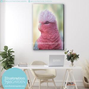 Rosie Pink Galah fine art print_stretched canvas_corrugated iron_Aussie Artist