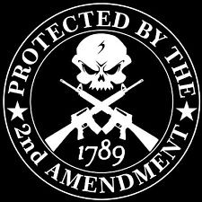 Second Amendment Skull with AR15 Protected By Decal / Sticker 2nd Amendment