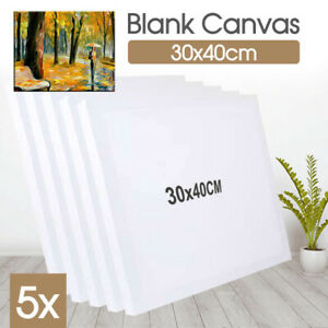 5x Blank Art Supply Professional Quality Stretched Canvas White Wood 30X40cm