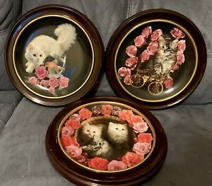 Set of 3 Danbury Mint 1993 Cat Collector Plates, w/ Wood Frames, Coming up Roses
