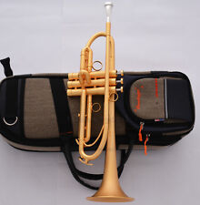 Customized Professional Satin Gold Bb Trumpet Horn Monel Piston Pro. Case