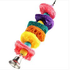 New listing Exiciting Luffa Pet Bird Parrot Macaw Bell Swing Scratcher Parrot Bites Toy Esca