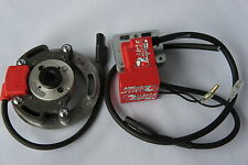 Digitale Selettra KZ Ignition for JAWA JRM 250 500 Speedway Engine analoges pvl