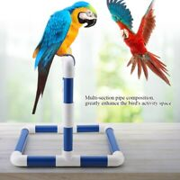 Parrot Play Stand Bird Playground Perch Rack For Parrot Training
