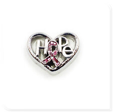 10pcs Crystal Hope Heart Floating Charms For Living Glass Memory Locket FC1569