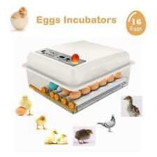 Digital 7-16 Egg Incubator Automatic Turning Temperature Control Chicken Hatcher