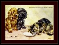 English Print Cocker Spaniel Puppy Dog Dogs Persian Kitten Cat Picture Poster