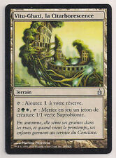 MTG Magic RAV - (2x) Vitu-Ghazi, the City-Tree/la Citarborescence, EX, French/VF