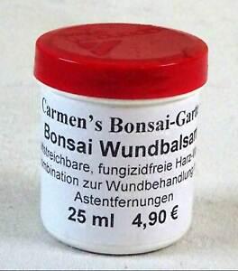 *CBG, Bonsai Wundbalsam, 25ml, Wundverschluss für Bäume, Grundpreis €19,60/100ml