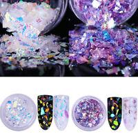 2Boxen Fluoreszierend Nagel Glitzer Puder Nail Sequins Glitter Powder Irregular