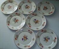 Colonial USA Fine Translucent China Set of 7 Dinner Plates
