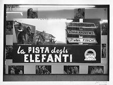 FOTOGRAFIA La pista degli elefanti.E.Taylor,CINEMA ARENA DEL SOLE BOLOGNA,1954