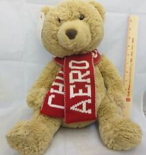 "Aeropostale Teddy Bear Plush 17"" Red Knit Scarf Chill Out original sales tag"